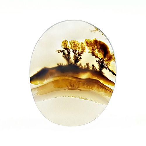 dendritic agate یا سنگ شجر